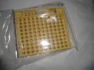 CIMG2888